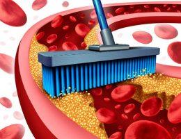 reducir los niveles de colesterol en la sangre