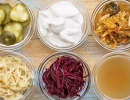 alimentos con probióticos
