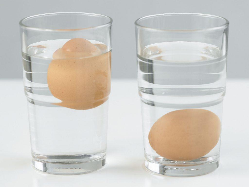 Dos huevos en vasos de agua